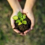 Sustentabilidade blog VR img